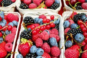 berries-154